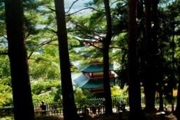 Chureito Pagoda in Fujiyoshida